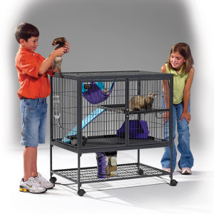 ferret nation 181 single level cage
